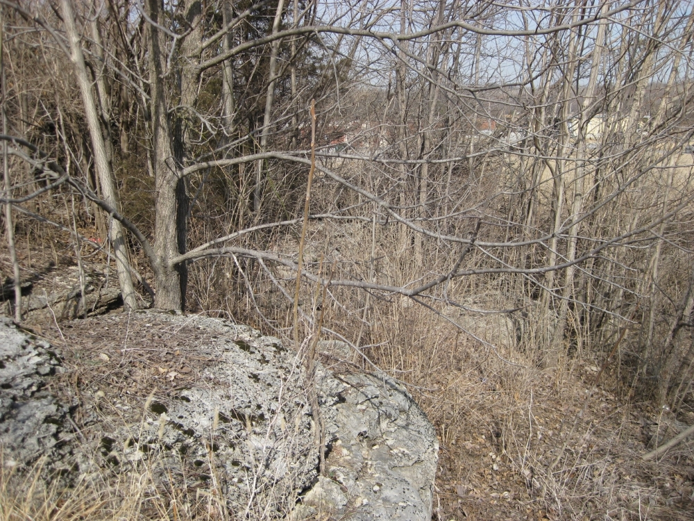 Close up of rock ledge near tour stop