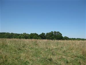 Looking east across Boonville battlefield from the 'Marmaduke Defensive Line' tour stop