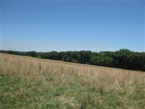 Looking northeast across Boonville battlefield from the 'Marmaduke Defensive Line' tour stop