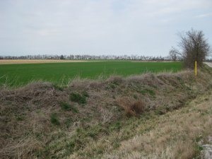 Battle of Carthage Tour Stop 2 Facing Northwest from Sigel Position