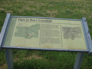 Fight in Ray's Cornfield Interpretive Sign